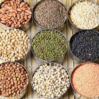 7 Plant Based Protein Sources to Add to Your Diet ...