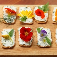 10 Scrumptiously Delicious Christmas Canapés for the Holidays ...