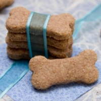 7 Dog-Friendly Recipes to Make for Your Sweet Little Dog to Enjoy ...
