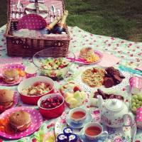 Here's How to Keep Your Food Fresh While on a Picnic ...