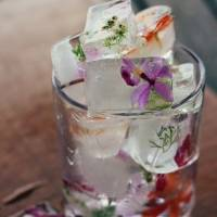 7 Types of Ice Cubes to Keep Your Drinks Ice Cold ...