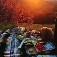 Frugal Fun: Picnics for Pennies ...