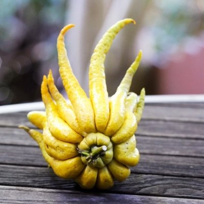 7 Strange Fruits from around the World That You Should Try ...