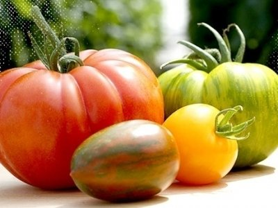 7 Tomato Varieties You're Totally Missing out on ...