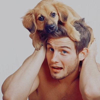 7 Tricks Your Dog Could Teach Your Boyfriend ...