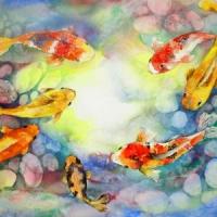 5 Reasons I like Koi Fish ...