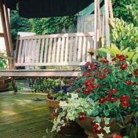 5 Secrets to a More Productive Garden ...