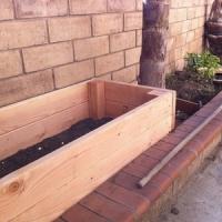 5 Tips on Starting a Garden ...