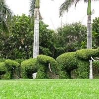 7 Summer Garden Ideas ...