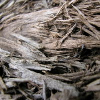 7 Tips on Creating Mulch ...