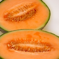 7 Tips on Growing Cantaloupe ...