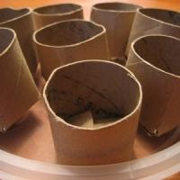 5 Ways to Make Seedling Pots ...