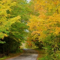 5 Signs of Fall I Love ...