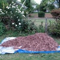 7 Garden Landscaping Tips ...