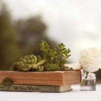12 Amazingly Creative Planters ...