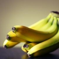 5 Tips on Growing Banana Plants ...