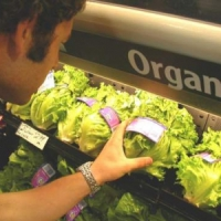 8 Reasons to Switch to Organic Foods ...