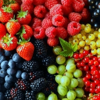 10 Favourite Berries to Promote Your Health and Beauty ...