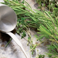 7 Magical Herbs to Fight Yeast in the Body ...