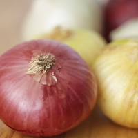 7 Health Benefits of Onions That You Should Know ...