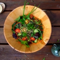 7 Satisfying Sprouts and Seeds for Summer Salads That Are Sumptuous ...