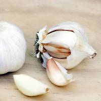 Here's Why You Must Start Eating Garlic ASAP ...