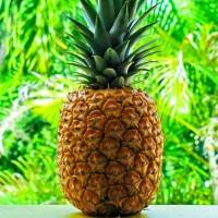 7 Amazing Benefits of Pineapples You Didn't Know about ...