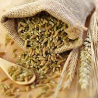 7 Reasons to Reconsider Grains if You Have Leaky Gut Syndrome ...