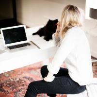 7 Work Desk Essentials for Better Health ...