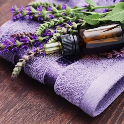 10 Best Essential Oils to Use ...