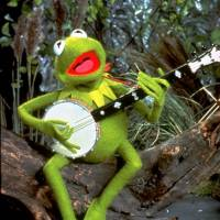 9 Quotes from Kermit the Frog: the Puppet with a Lot to Say ...