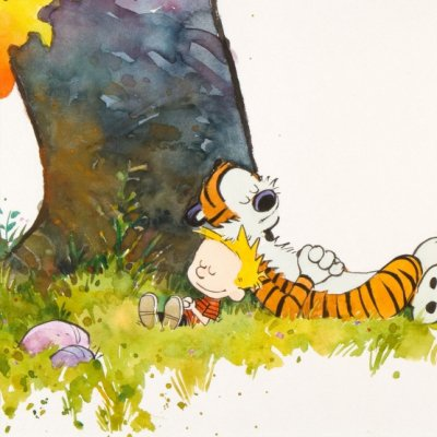 25 Important Life Lessons from Calvin and Hobbes ...