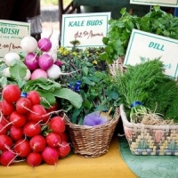 11 Things You Should Know about Farmer's Markets ...