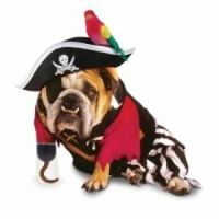 8 Charmingly Cute Costumes for Your Adorable Dog ...