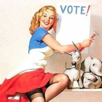7 Reasons to Vote ...