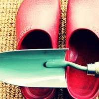 7 Gorgeous Gardening Blogs ...