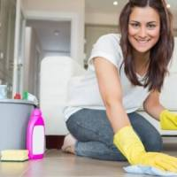 7 Must Try Cleaning Brands for Best Results ...