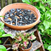 9 Adorable and Creative DIY Birdbaths ...
