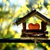 9 DIY Birdhouses to Make ...