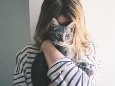 7 Common Cat Health Problems That You Should Be Aware of ...