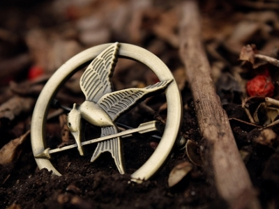 7 Reasons to Read the Hunger Games ...