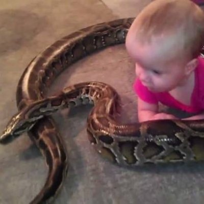 OMG! This Baby Girl Loves Playing with an Unusual Animal: a Giant Python ...