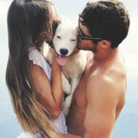 The 7 Best Pets to Raise with Your Boyfriend ...