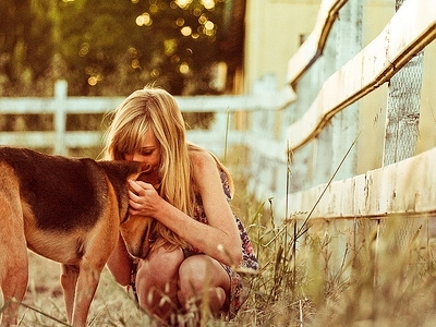 8 Great Movies for Dog Lovers ...