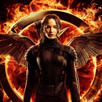 13 Book Series to Read if You Loved the Hunger Games ...