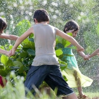 10 Fun Green Activities to do with the Kids ...