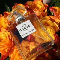 7 Chanel Perfumes to Definitely Try ...