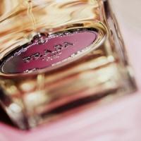 7 Prada Perfumes That I Love ...