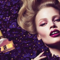 8 Hot & Spicy Perfumes to Test out ...