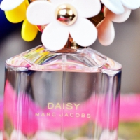9 Fantastic Floral Fragrances for Summer ...